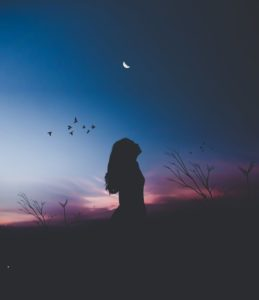 Silhouette of a person with long hair standing in a meadow after sunset. The sky is barely still pink, and you can see birds and in the moon in the lighter parts of the sky.