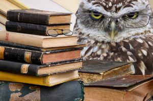 owl sitting next to a stack of books. reading glasses have been photoshopped onto the owl's face.