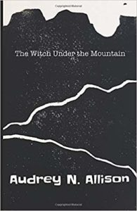 Book cover for The Witch Under the Mountain by Audrey N. Allison