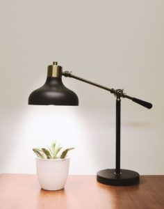 A desk lamp shining down on a houseplant
