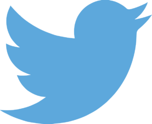 The Twitter logo. It's blue and of the outline of a flying bird.