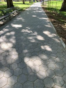 A sun dappled sidewalk in a park
