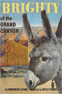 Brighty of the Grand Canyon by Marguerite Henry, Wesley Dennis book cover. Image on cover is of a burrow standing next to the grand canyon