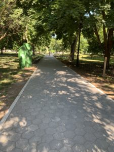A heavily shaded stone path in a park