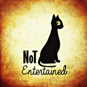 "Drawing of a perturbed black cat. The phrase ""not entertained"" is written next to and underneath it."
