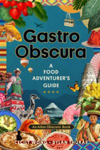 Gastro Obscura- A Food Adventurer's Guide by Cecily Wong book cover. Image on cover is a mishmash of various travel and food images,from an airplane to strawberries.