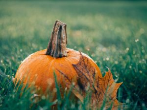 A pumpkin covered in dew sitting in grass covered in dew. There is an orange leaf leaning up on the pumpkin.